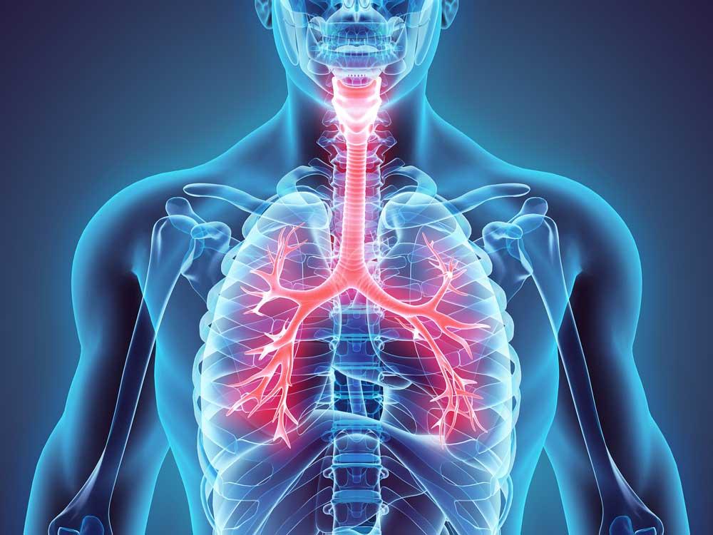 متخصصان عقیدهاند دارند انجام تمرینات بدنی و تنفسی هدفمند برای درمان و پیشگیری از بیماریها تنفسی ضروری است.